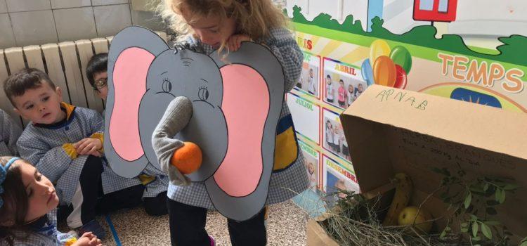 """1r A Ei – """"Projecte els elefants"""""""