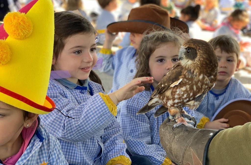 """Visita """"Associació de falconeria de les Balears"""" als alumnes d'infantil"""