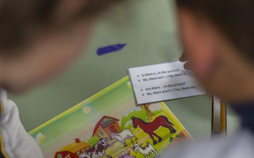 Ajudes a programes d'immersió lingüística